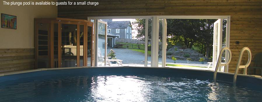 Plunge Pool at Ty Canol
